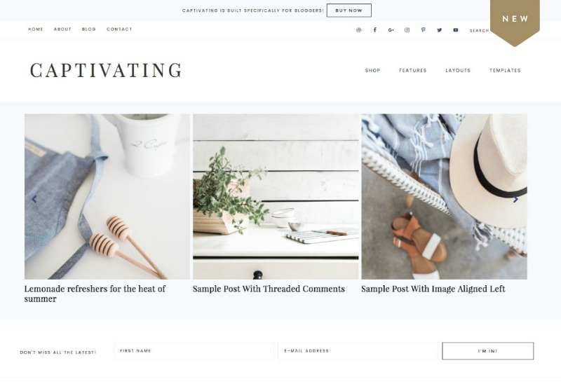 Best Feminine WordPress Themes For Bloggers & Female Entrepreneurs Captivating Premium WordPress theme by Restored 316